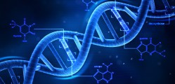 LOKESH KUMAR DNA FINGERPRINTING AND DNA SEROLOGY EXPERT1