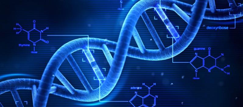 LOKESH KUMAR DNA FINGERPRINTING AND DNA SEROLOGY EXPERT1
