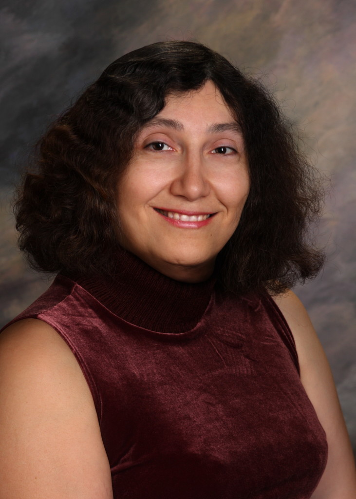 Rebecca Ann Heineman