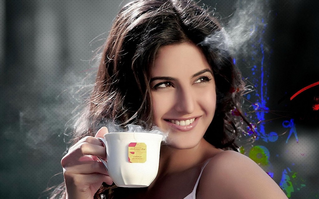 Kingfisher Calendar Girls turned actresses: KATRINA KAIF