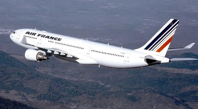 Toddler found hidden inside handbag on Air France flight to Paris