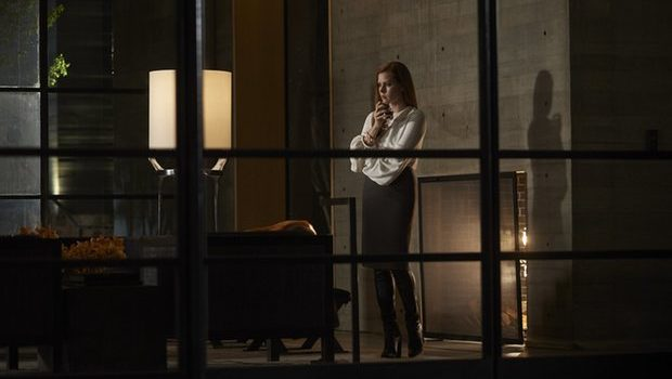 Nocturnal Animals Hollywood Movie Directed by Tom Ford