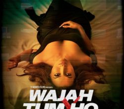 Bollywood Movie Wajah Tum Ho directed by Vishal Pandya